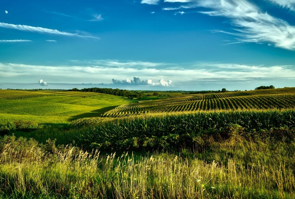 Use These Tips To Retire Well In Iowa!